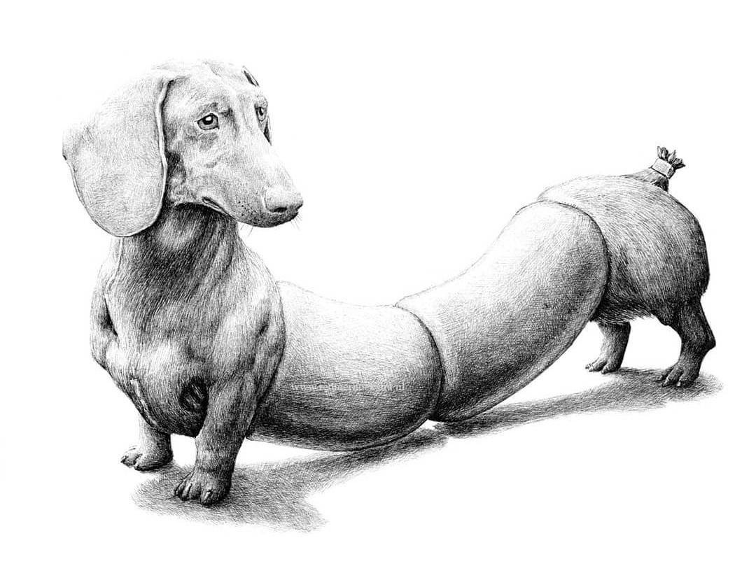 Иллюстрация Редмера Хоекстра
