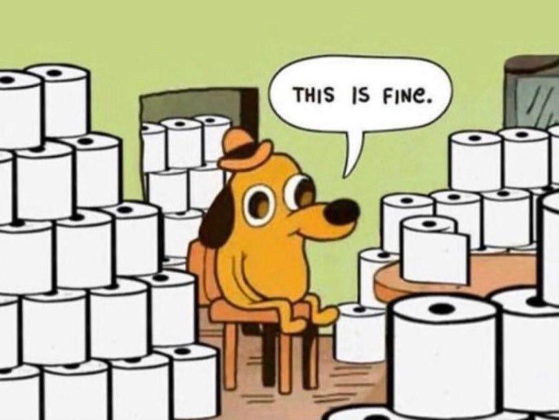 Пес сидит в туалетной бумаге