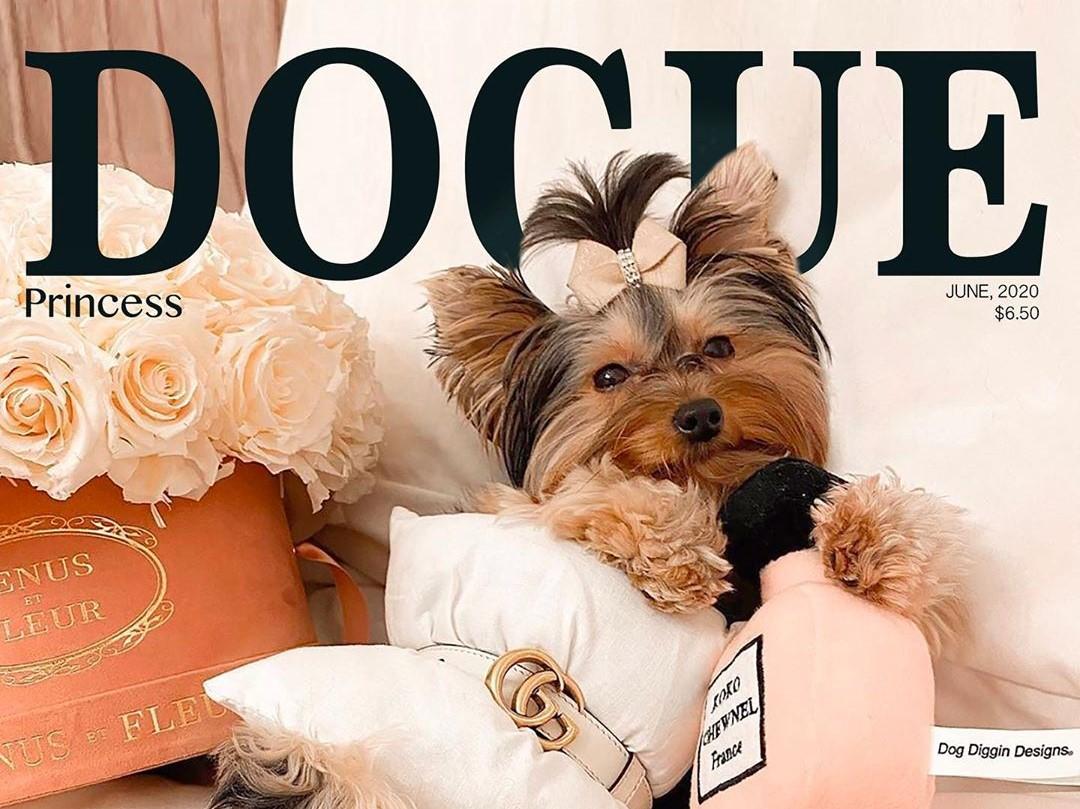 Обложка Dogue