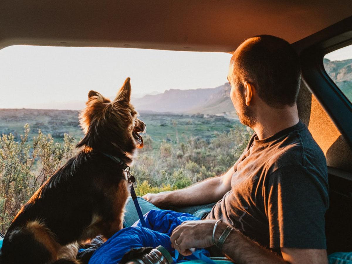 Мужчина с собакой в машине