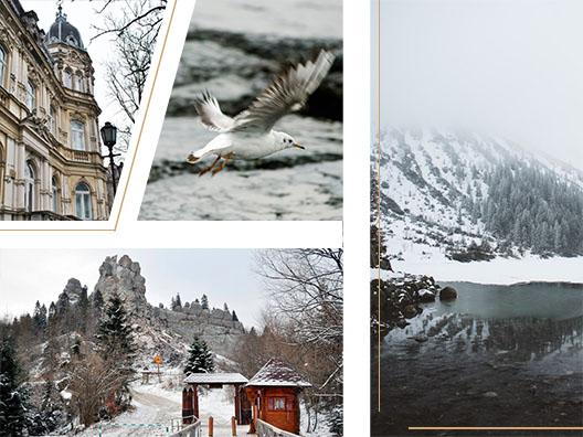 Коллаж с зимними локациями