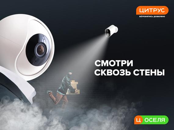 IP-камеры видеонаблюдения