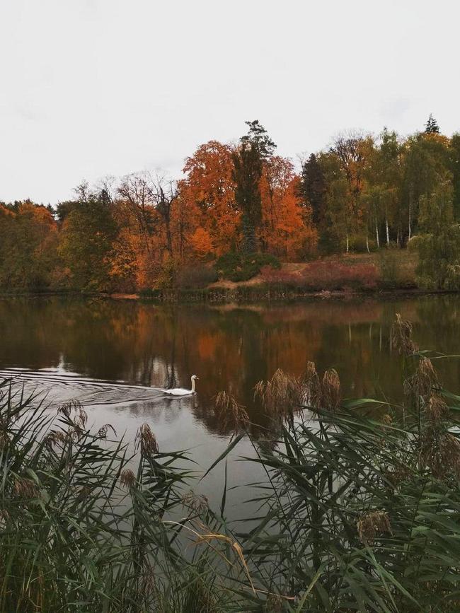 «Тростянец» озеро