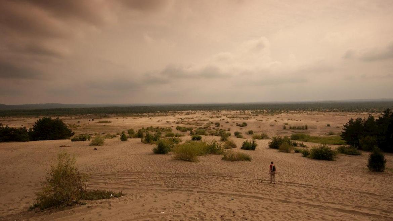 Алешковские пески фото