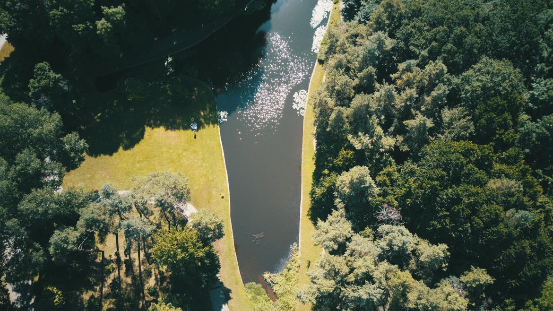 Дендропарк озеро
